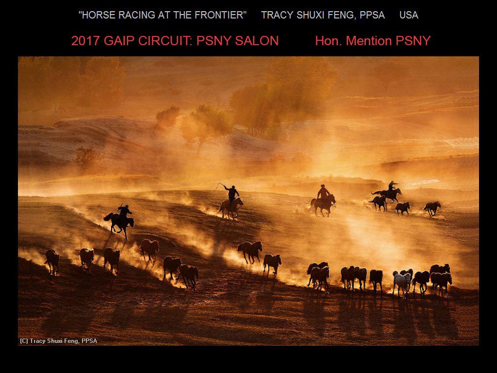 纽约摄影学会国际联赛开放组获奖作品分享_图1-17