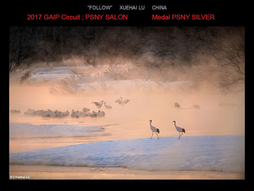 纽约摄影学会国际联赛开放组获奖作品分享_图1-4