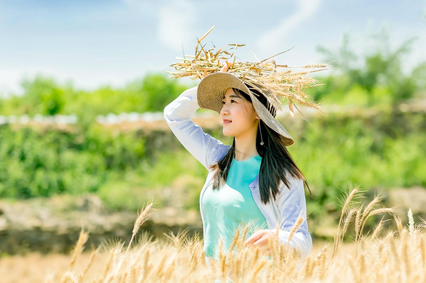 麦收时节 和临沂女孩张艳霞相约费县演绎麦田守望者_图1-6