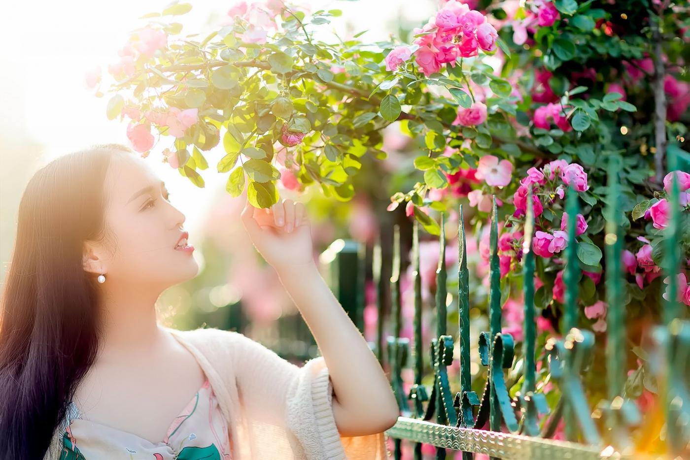 蔷薇·阳光·女孩 去见你想见的人吧_图1-3