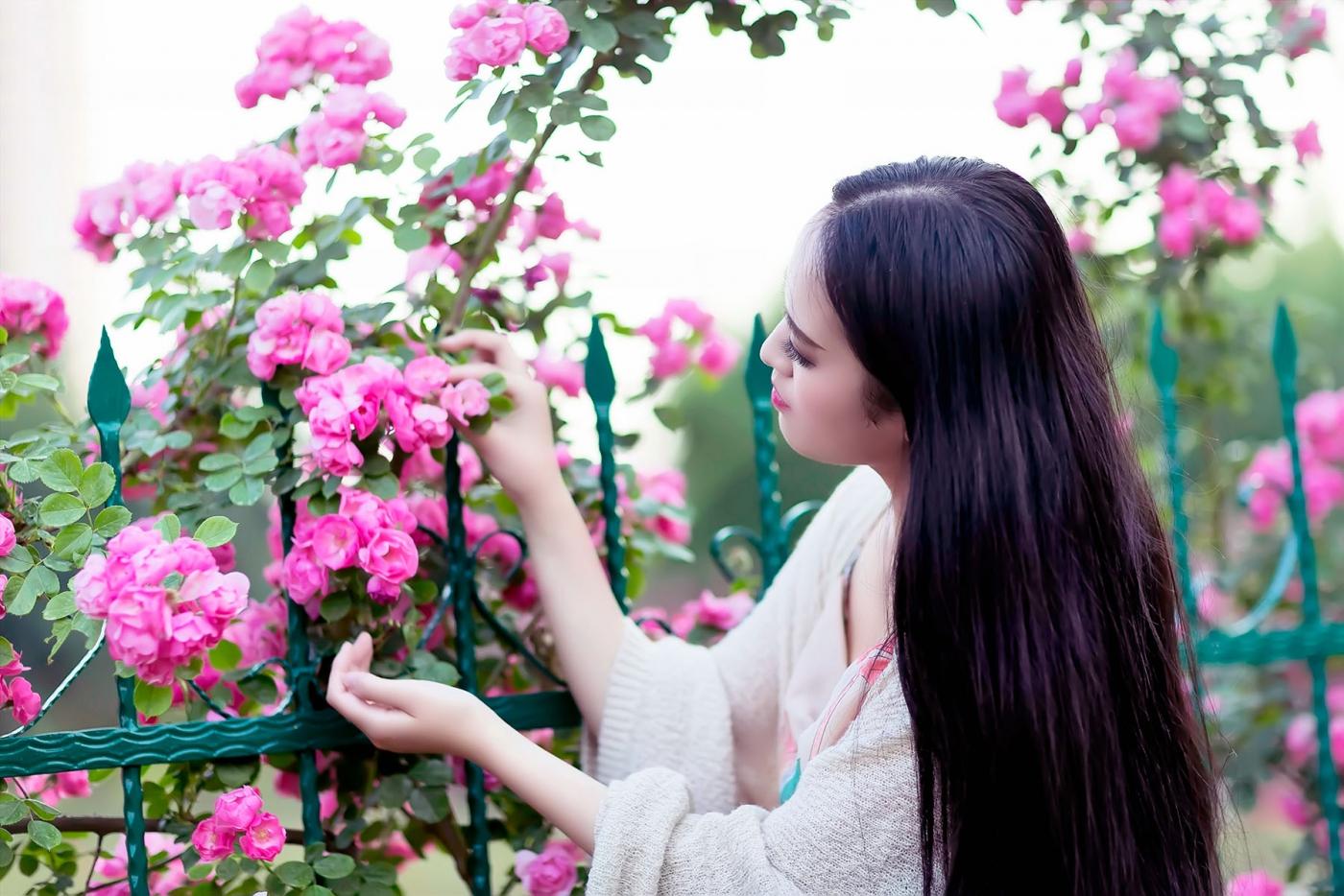 蔷薇·阳光·女孩 去见你想见的人吧_图1-15