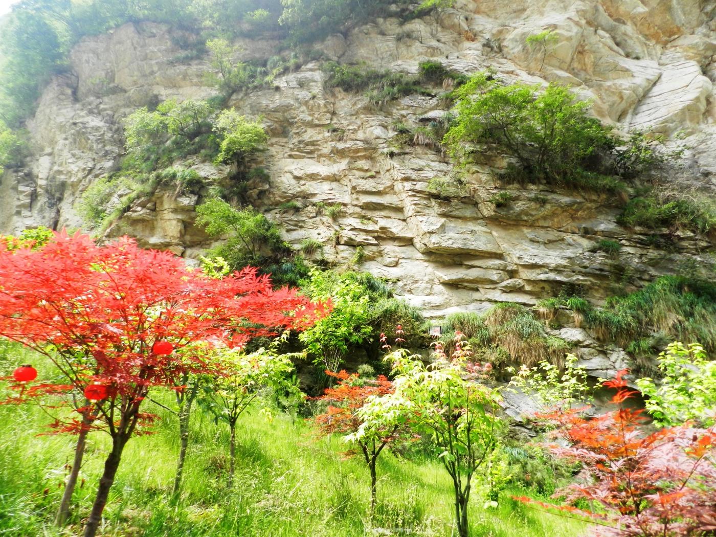 【汉良子】西岳华山之一(图)_图1-5