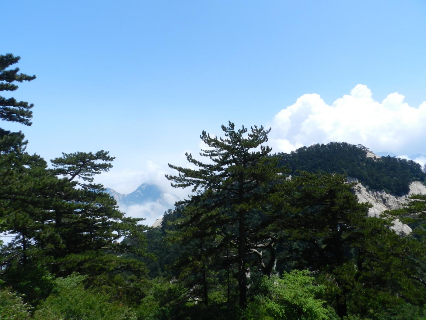 【汉良子】西岳华山之二(图)_图1-19