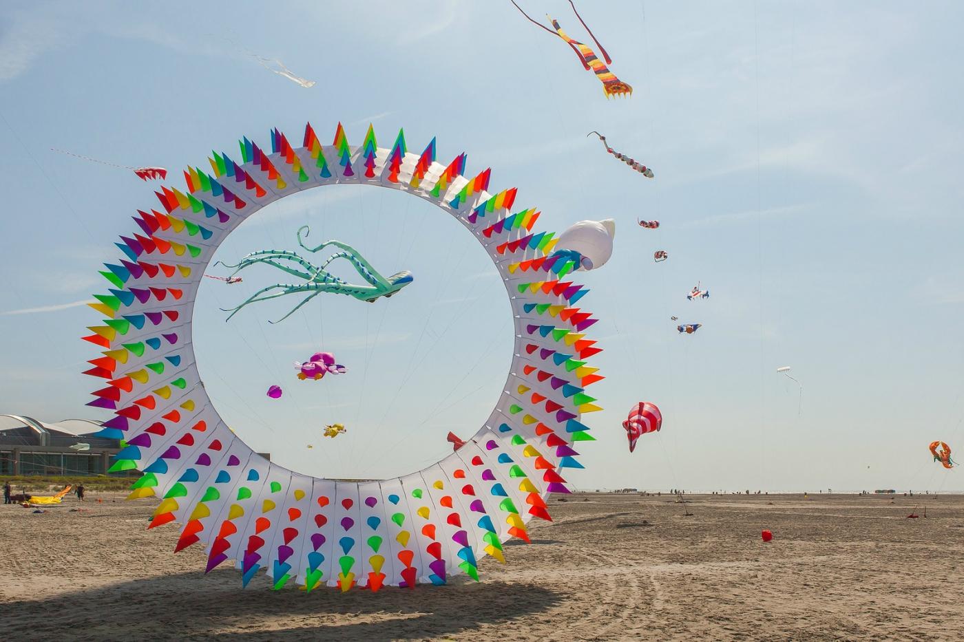 超大的风筝,真是少见_图1-4