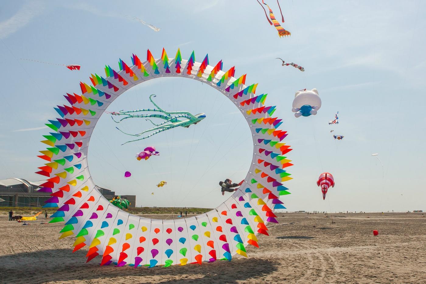 超大的风筝,真是少见_图1-3