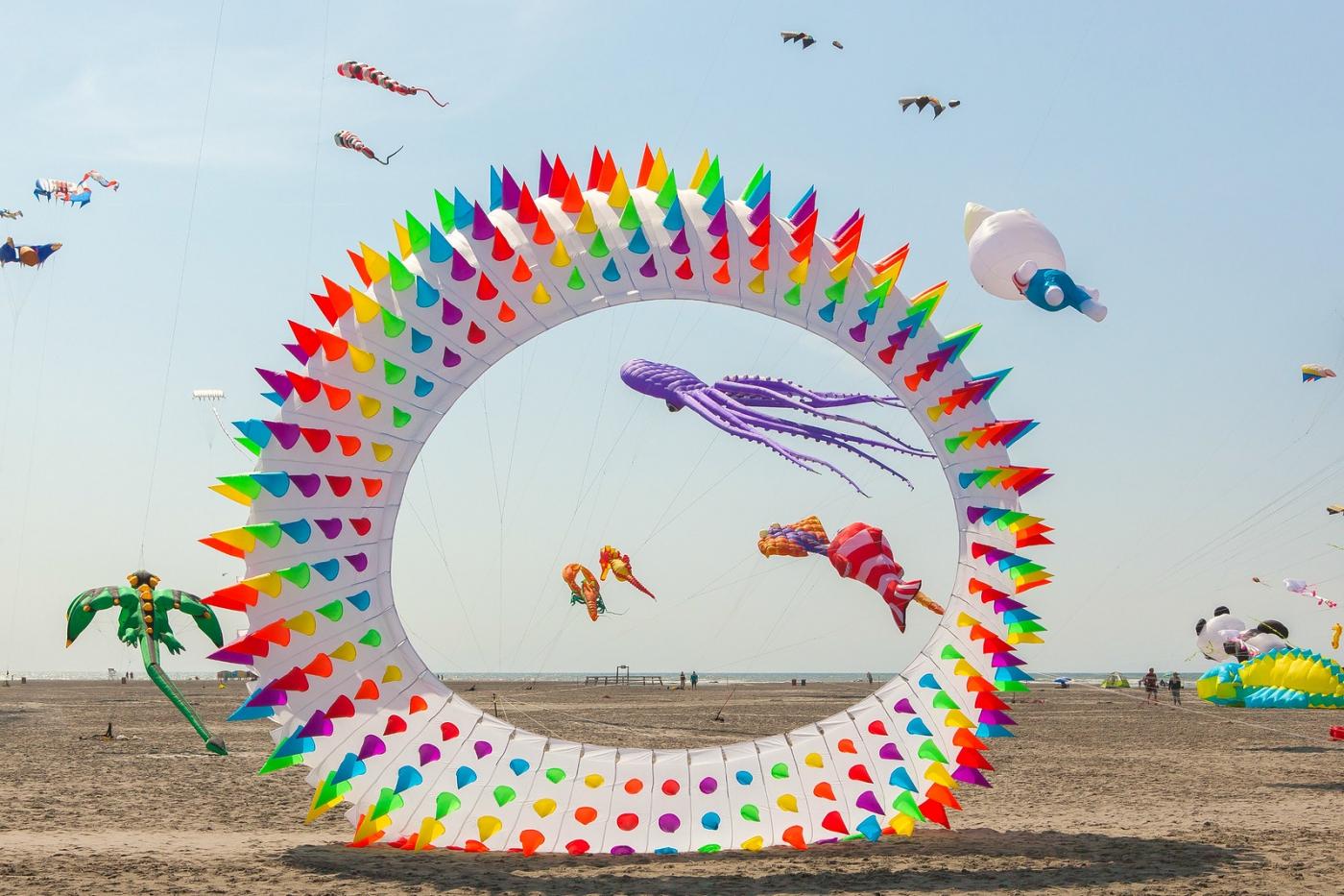 超大的风筝,真是少见_图1-2