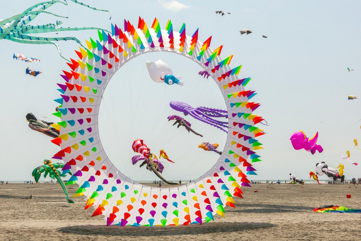 超大的风筝,真是少见_图1-1