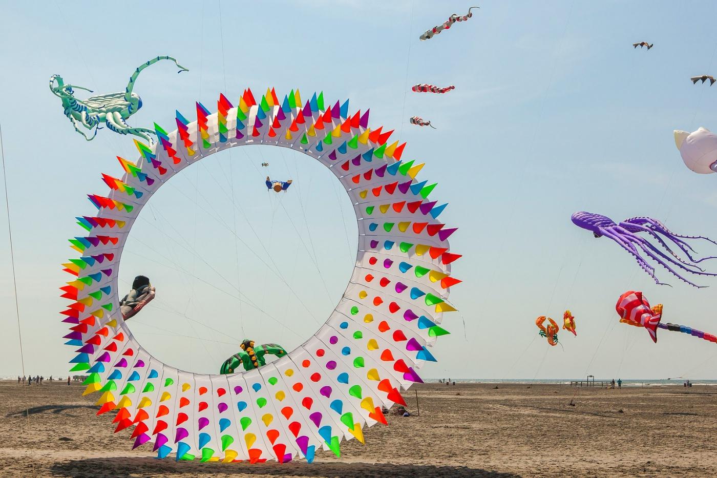 超大的风筝,真是少见_图1-5