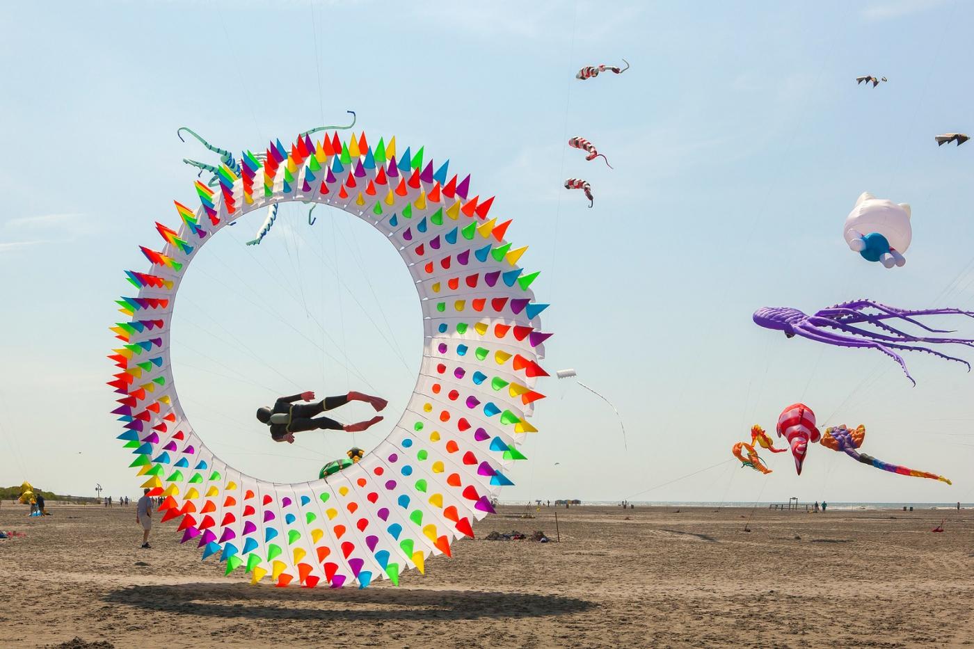 超大的风筝,真是少见_图1-6