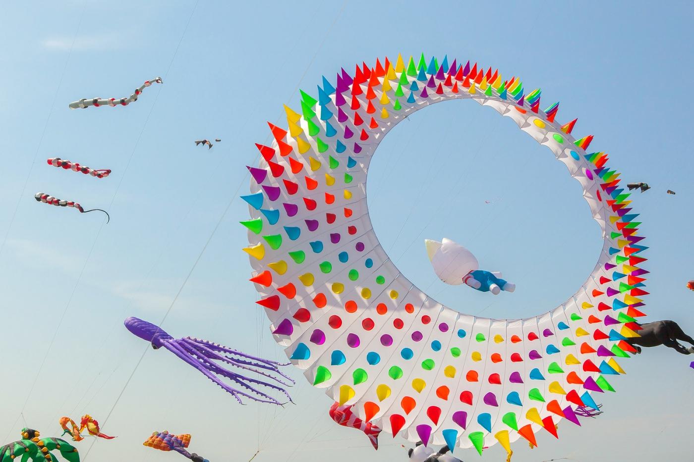 超大的风筝,真是少见_图1-7