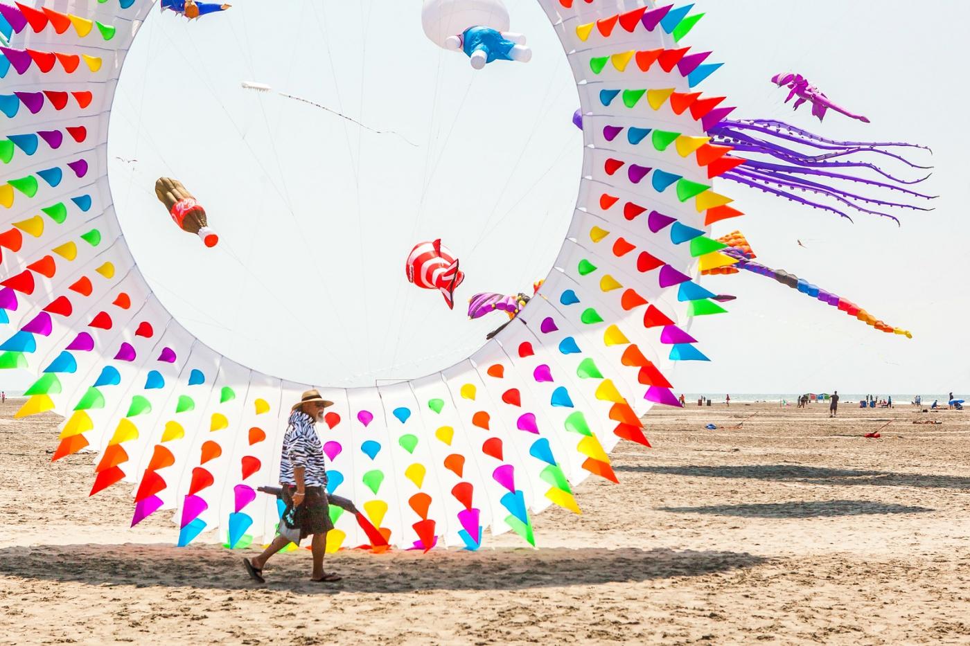 超大的风筝,真是少见_图1-8