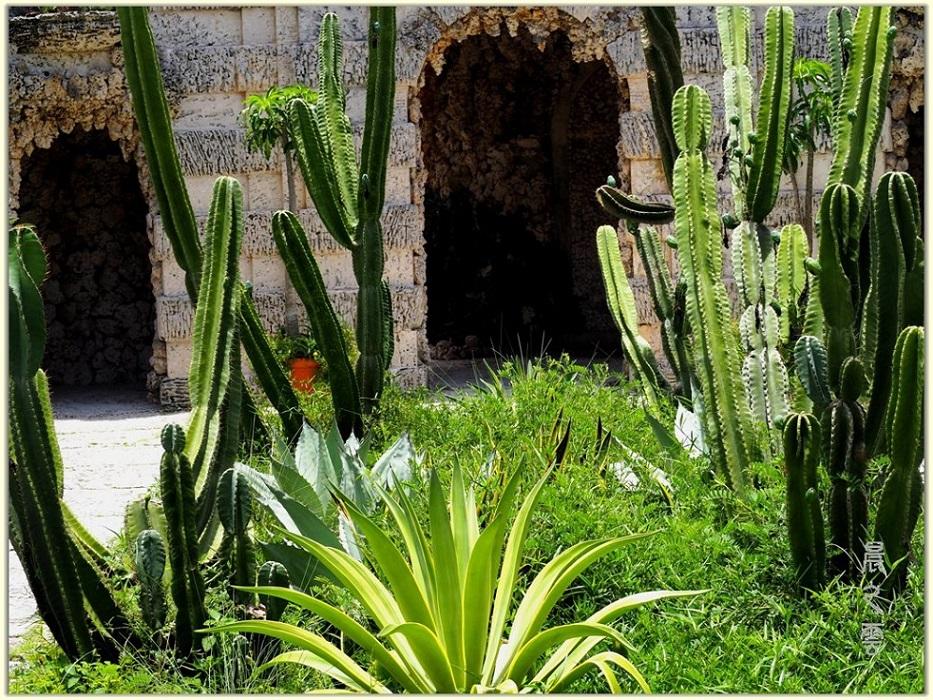 维兹卡亚花园博物馆(Vizcaya)--迈阿密_图1-6