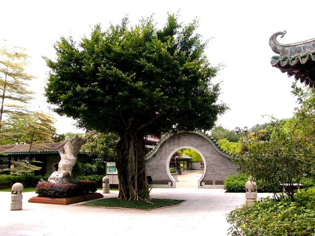 """香港公園之_""""嶺南之風"""" 2_圖1-4"""