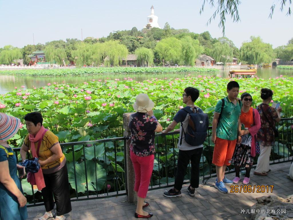北京城中一个让你情怀萦绕的地方_图1-13