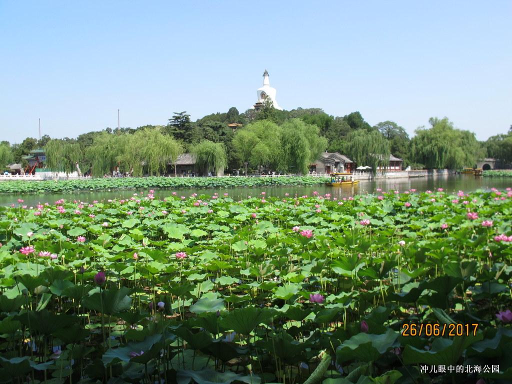 北京城中一个让你情怀萦绕的地方_图1-5