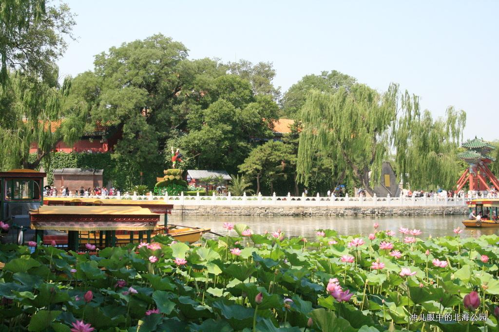 北京城中一个让你情怀萦绕的地方_图1-24