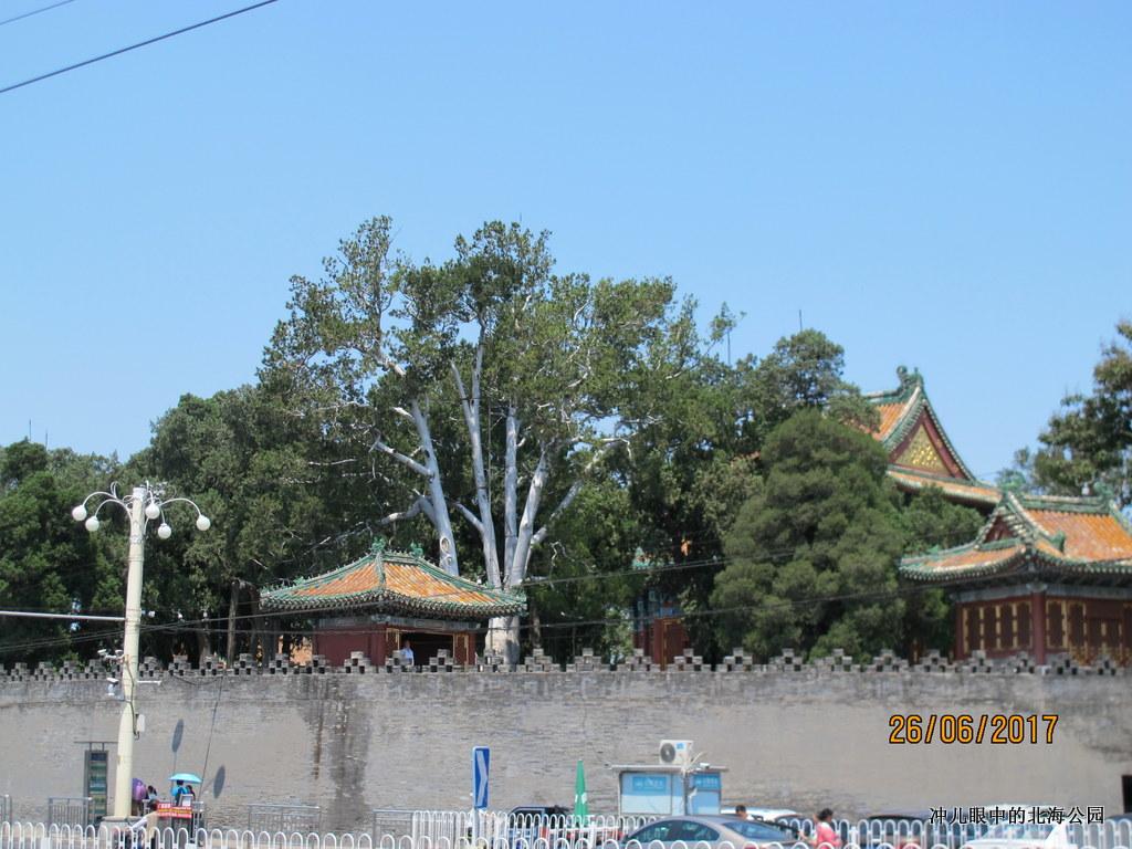 北京城中一个让你情怀萦绕的地方_图1-14