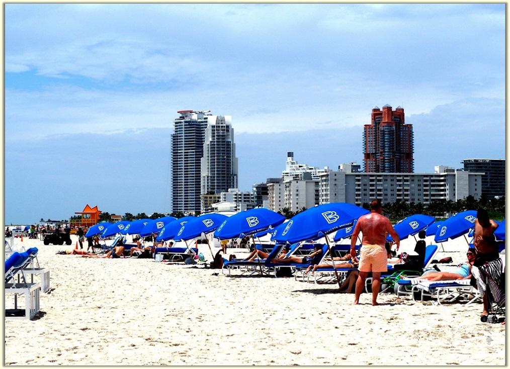 旅游城市--迈阿密_图1-2