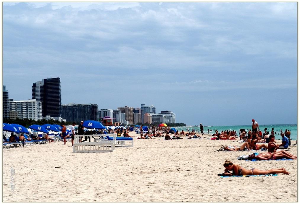 旅游城市--迈阿密_图1-3