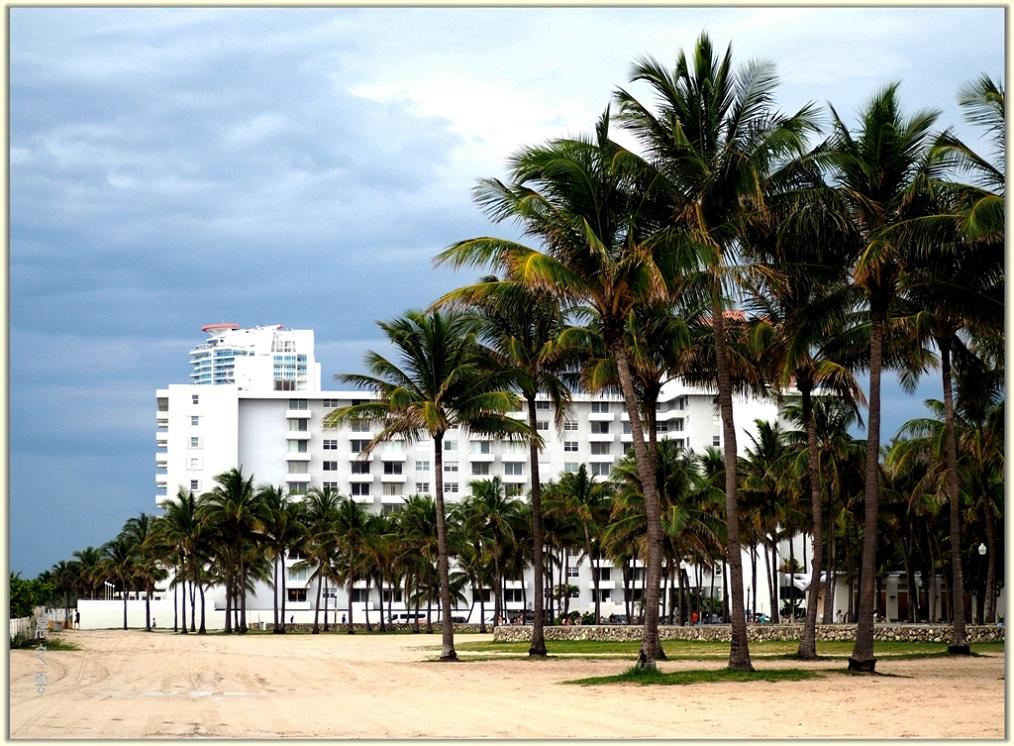 旅游城市--迈阿密_图1-6