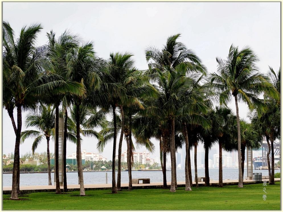 旅游城市--迈阿密_图1-9