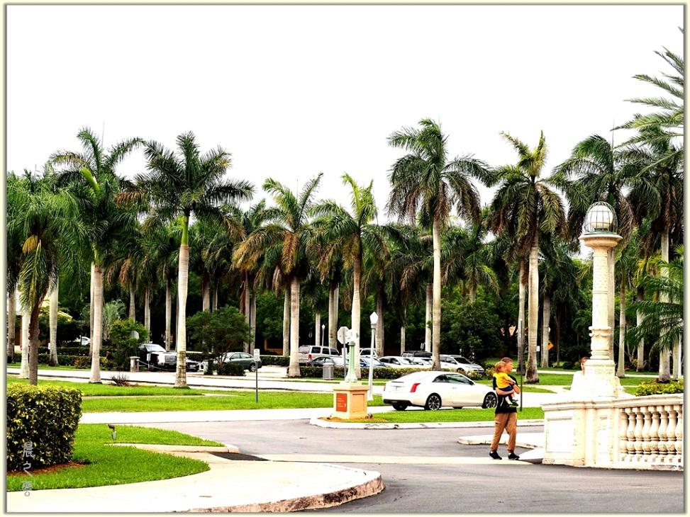 旅游城市--迈阿密_图1-16