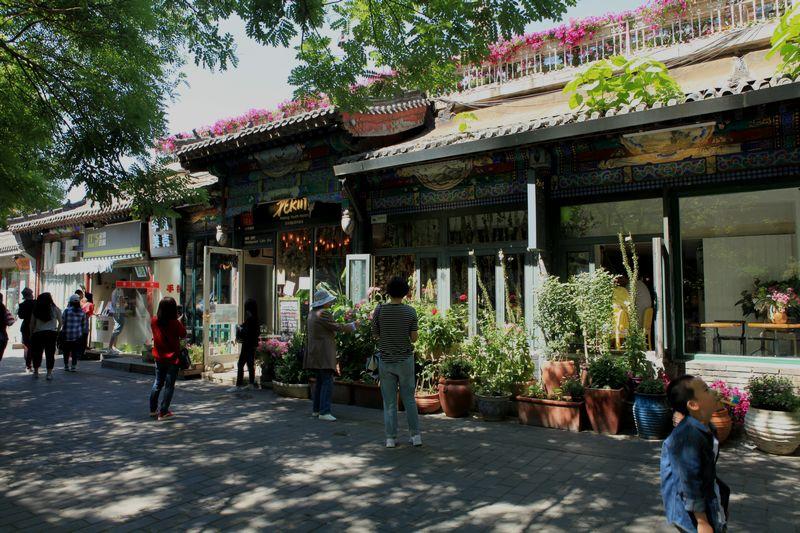 北京 南罗鼓巷_图1-8