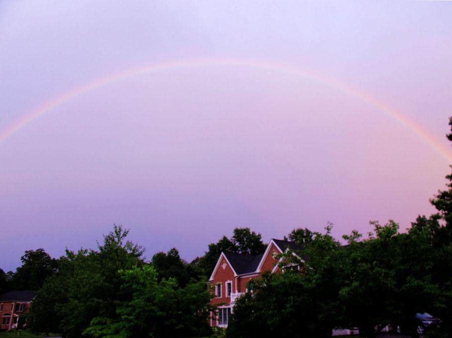 【小虫摄影】雨后的彩虹_图1-1
