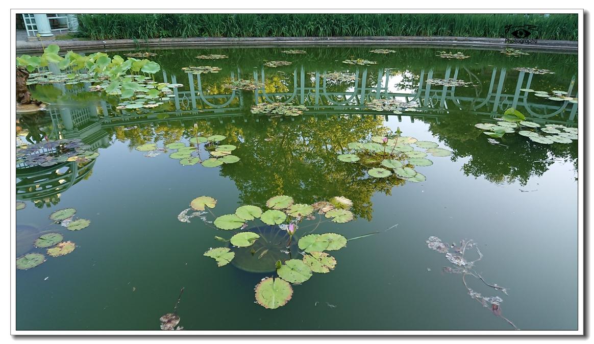 【相机人生】长岛豪宅博物馆(496)_图1-32
