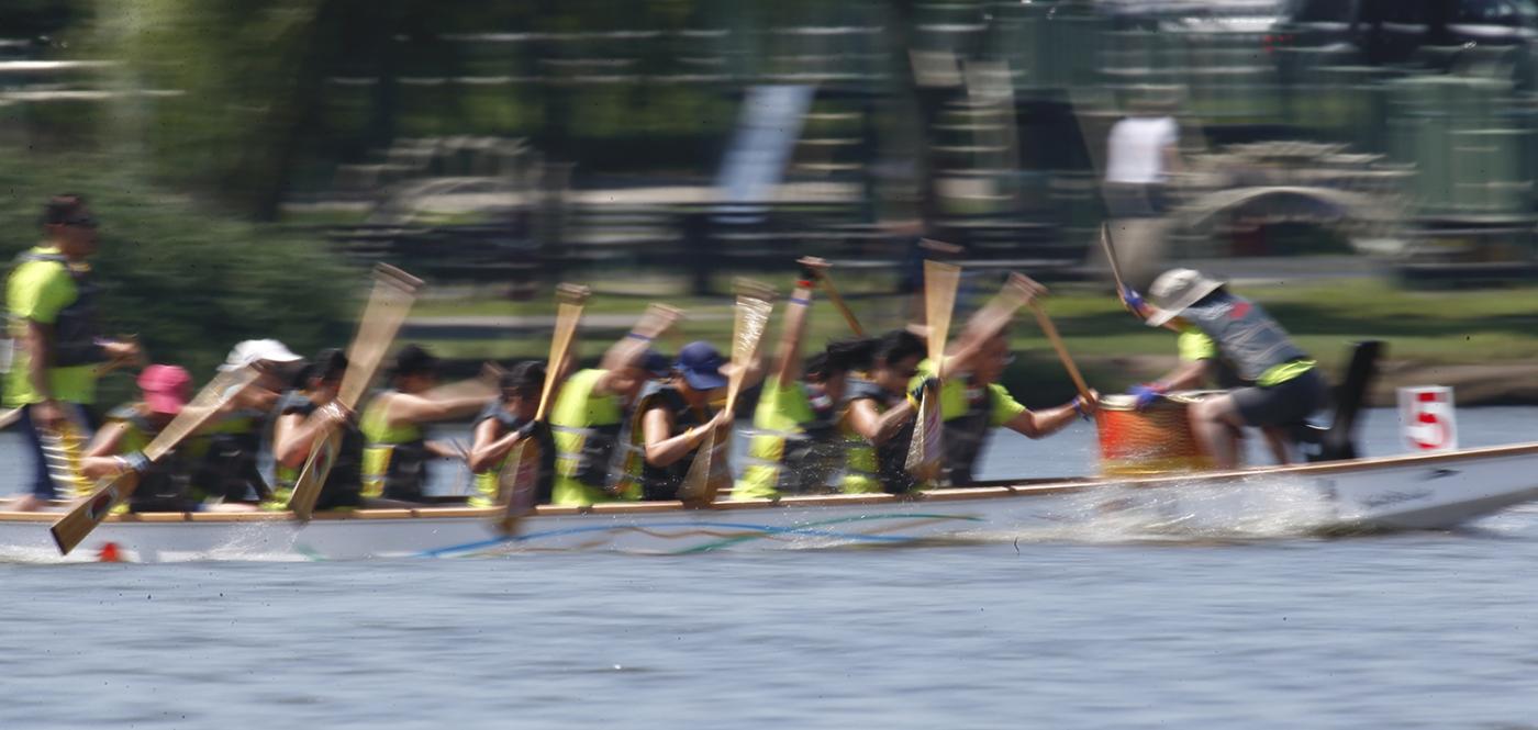 2014纽约龙舟节        【一片叶】_图1-9