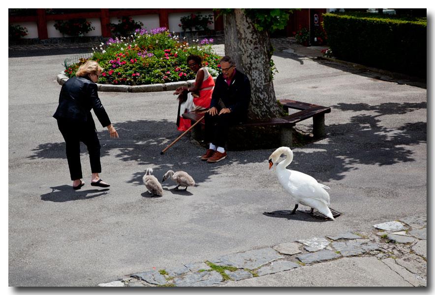 《酒一船摄影》- 瑞士行:日内瓦湖畔的法国小镇_图1-36