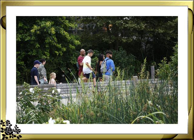 布鲁克林大桥公园是新一代的濱河公园,是绿地公园,视野开阔,欣赏曼哈顿天际线的好 . ..._图1-7