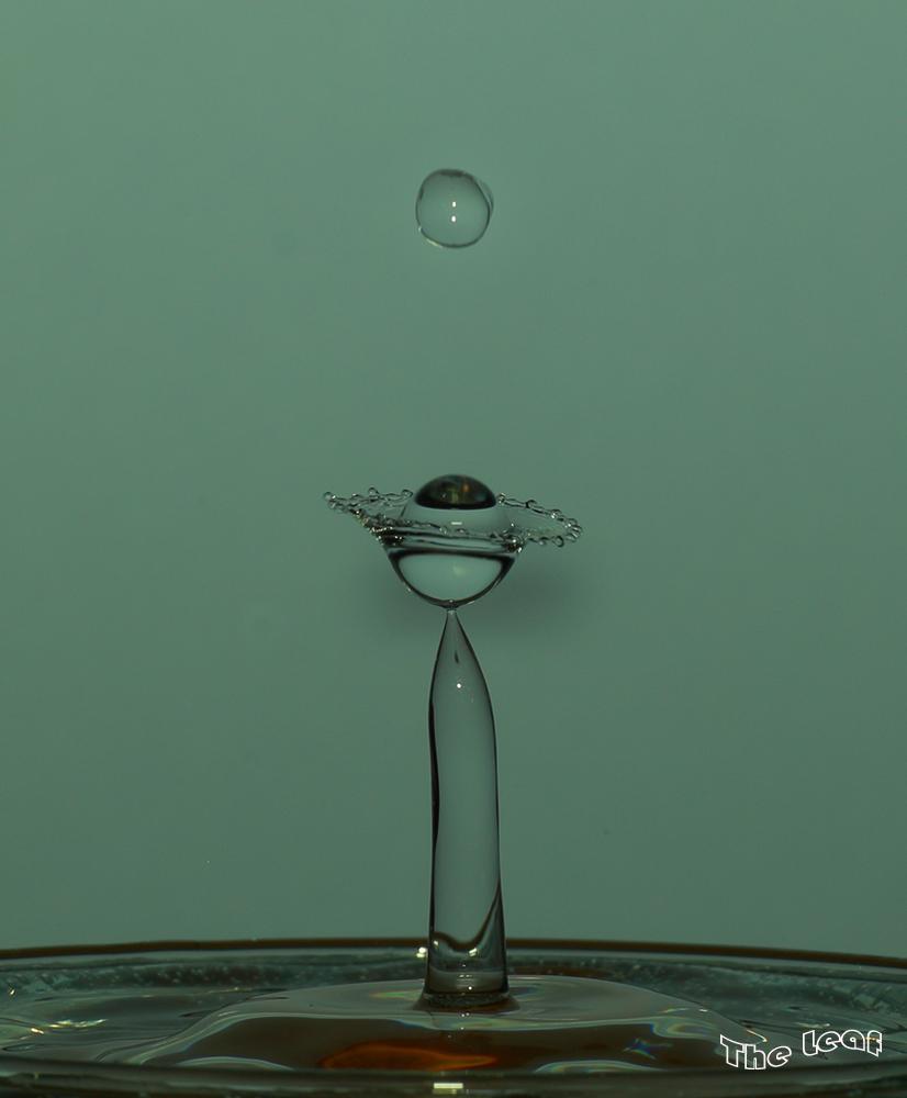 斑斓的水滴      【一片叶】_图1-10