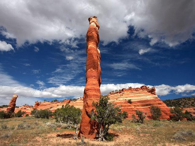 烟囱岩与白石林   新墨西哥州_图1-1