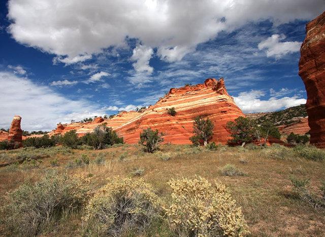 烟囱岩与白石林   新墨西哥州_图1-2