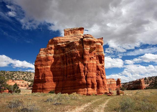 烟囱岩与白石林   新墨西哥州_图1-4