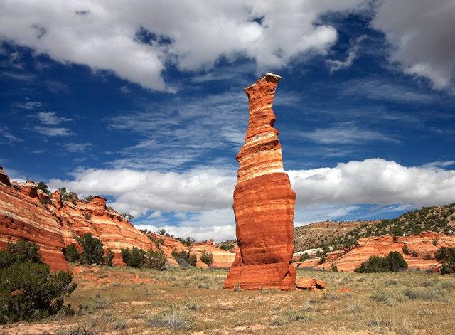 烟囱岩与白石林   新墨西哥州_图1-7