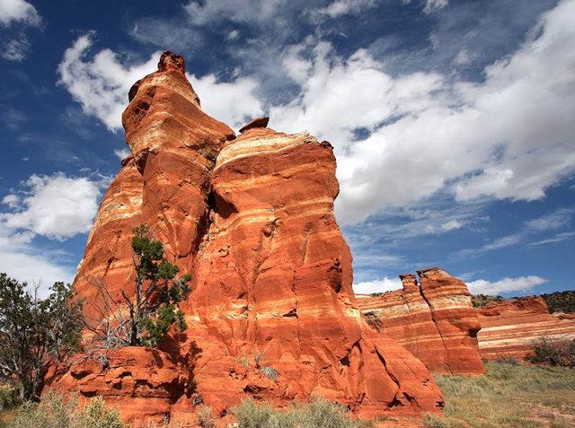 烟囱岩与白石林   新墨西哥州_图1-9