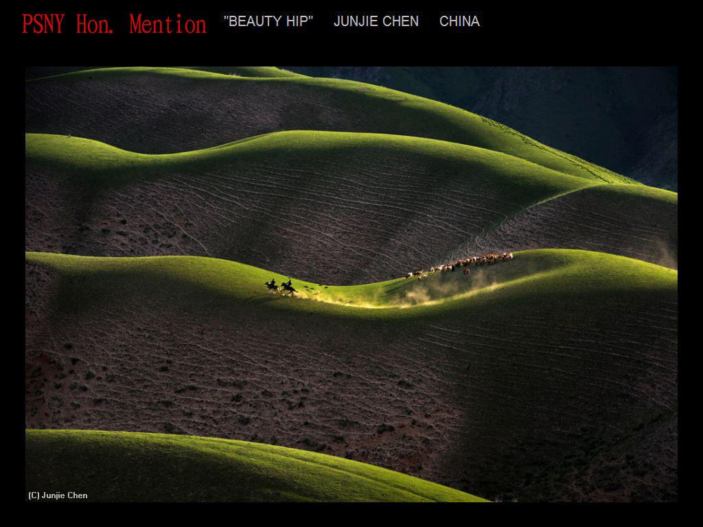 纽约摄影学会2017年沙龍數碼彩色自由題組獲獎作品_图1-18