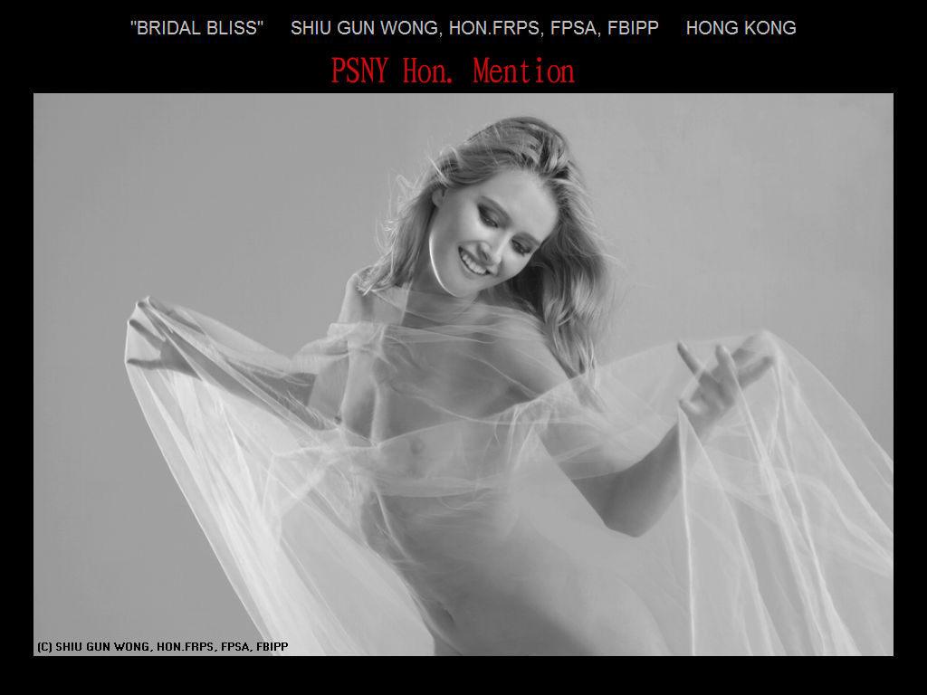 纽约摄影学会2017年沙龍數碼單色自由題組獲獎作品_图1-25