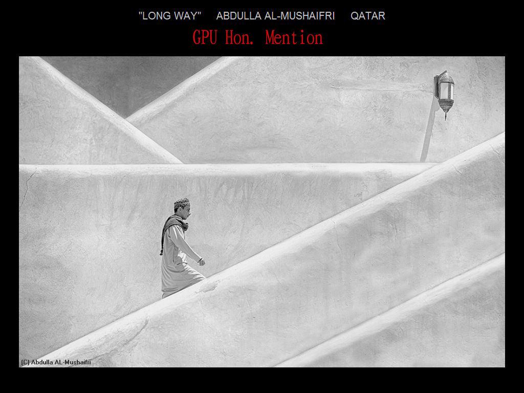纽约摄影学会2017年沙龍數碼單色自由題組獲獎作品_图1-27