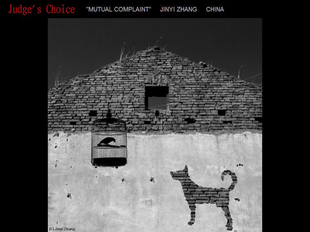 纽约摄影学会2017年沙龍數碼單色自由題組獲獎作品_图1-28