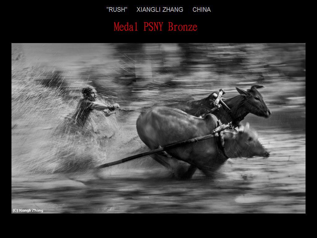 纽约摄影学会2017年沙龍數碼單色自由題組獲獎作品_图1-17