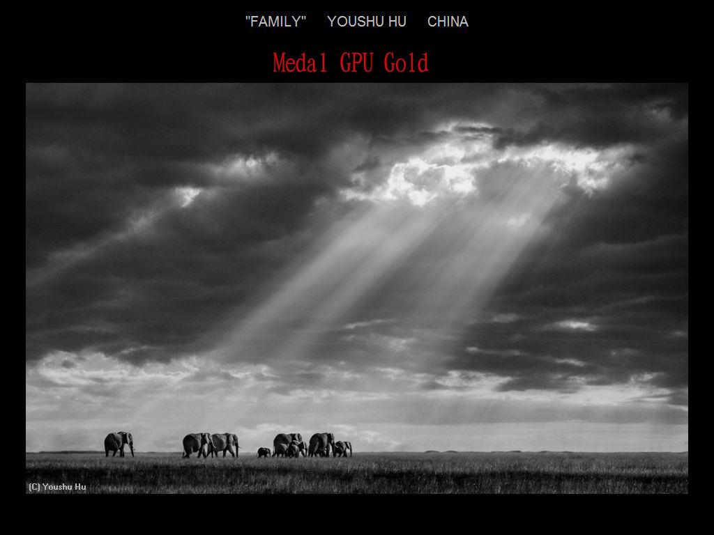纽约摄影学会2017年沙龍數碼單色自由題組獲獎作品_图1-13