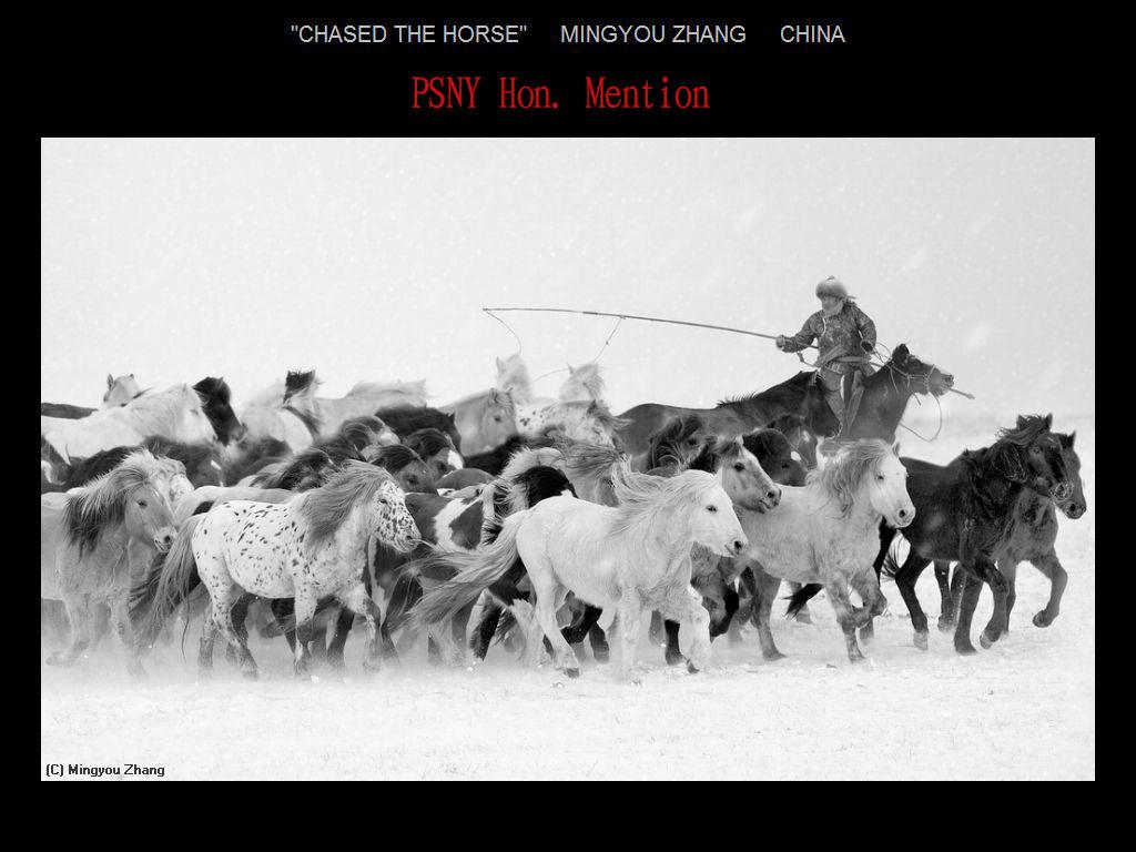 纽约摄影学会2017年沙龍數碼單色自由題組獲獎作品_图1-10