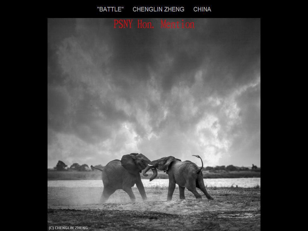 纽约摄影学会2017年沙龍數碼自然組獲獎作品_图1-25