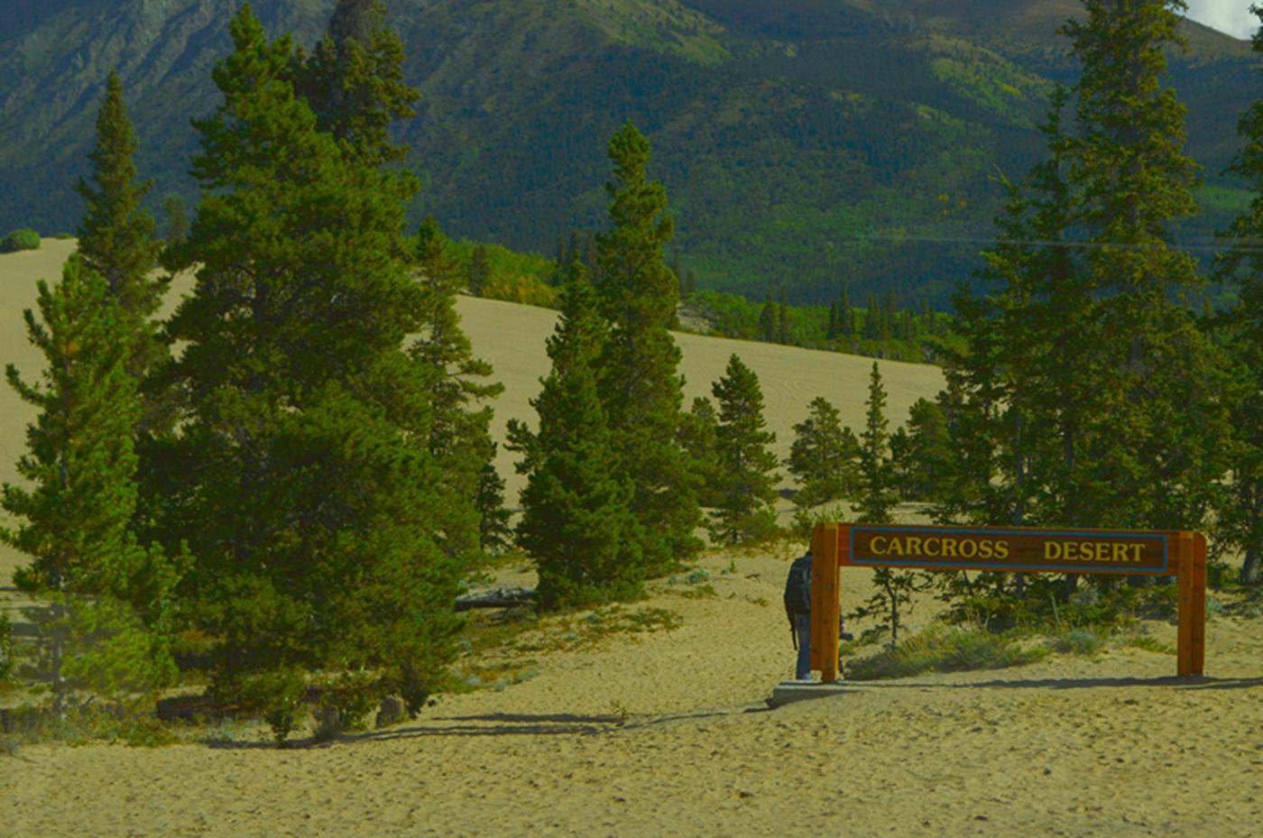 阿拉斯加,那山、那水、那人……_图1-31
