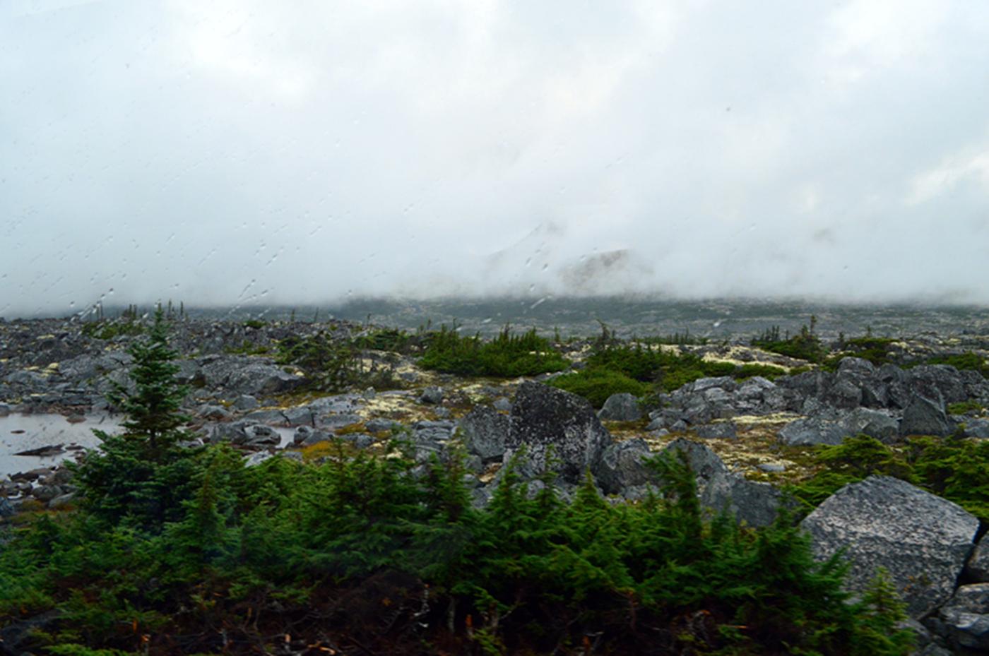 阿拉斯加,那山、那水、那人……_图1-25