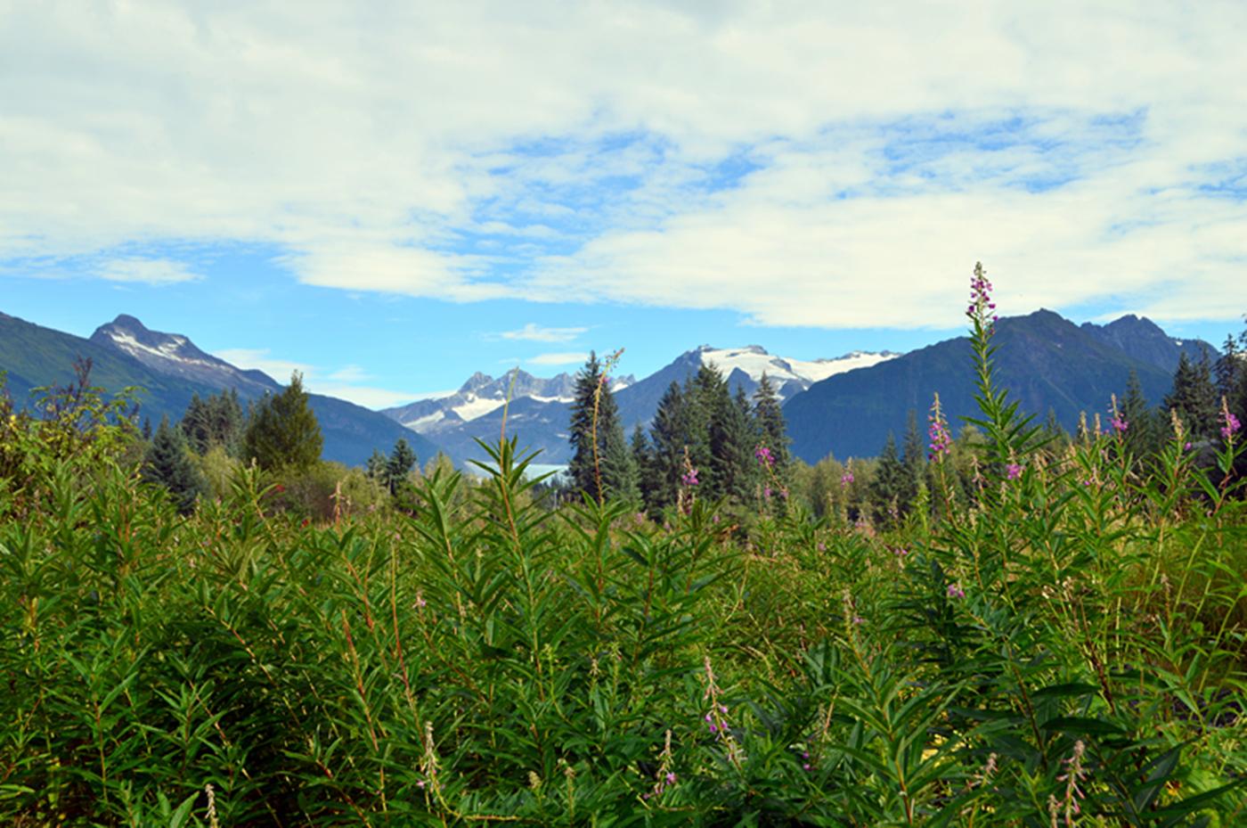 阿拉斯加,那山、那水、那人……_图1-23