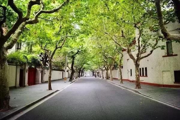 上海新貌_图1-19